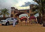 Dubai Royal Adventure Desert Safari Evening Tour