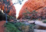 Half Day MacDonnell Ranges Private Tour