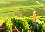 Champagne Trip from Paris with Tasting at Moët & Chandon or Nicolas Feuillatte