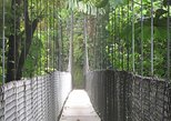 Arenal Hanging Bridges Nature Tour