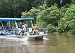 Full-Day Caño Negro Wildlife Refuge Boat Tour
