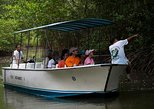 Damas Mangroove Boat Tour from Manuel Antonio