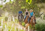 1 Hour Scenic Horseback Ride