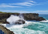 Beautiful Coastal Sightseeing Tour of Barbados