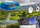 Kona Coffee Adventure Bike Tour