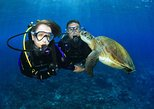 Gold Coast Scuba Diving Experience on Wave Break Island