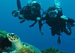 Beginner Scuba Diving Experience in Padang Bai