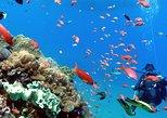 Scuba Diving in Padangbai for Certified Divers