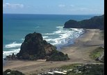 Auckland's Rainforest, Black Sand Beaches and Wilderness Trilogy Eco Tour