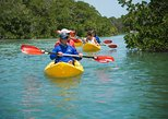 Key West Full-Day Island T'ing Eco-Tour: Sail, Snorkel and Kayak Adventure