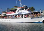 Eco and Dolphin Watch Tours of South Padre Island