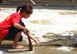 Crocodile Farm Tour & Tuaran Temple From Kota Kinabalu