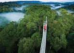 Full Day Trip of Brunei Ulu Temburong National Park including Canopy Walk