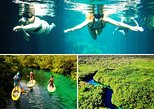 SNORKELING CENOTE PADDLEBOARDING TOUR