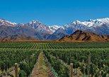 4-day Tour Mendoza Andes & Wine