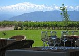 7-Day Mendoza & Santiago de Chile Wine Tour