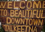 Talkeetna Small-Group Day Tour from Anchorage