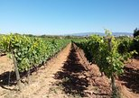 Algarve Wines Route