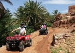 Half-Day Guided Quad Tour from Ait Ben Haddou to Fint Oasis