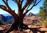 USA - Arizona: Old Bear Wallow Tour from Sedona