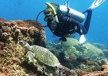 Bali Introductory Scuba Dive at Blue Lagoon Padang Bai