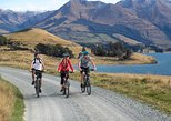 Queenstown Scenic Cruise and Half Day Cycle Trip