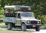 Chukka's Jeep Safari Adventure Tour from Montego Bay