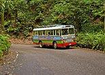 Chukka's Ocho Rios Zion Bus Tour