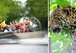 Airboat Adventure & Belize Zoo Wildlife Adventure