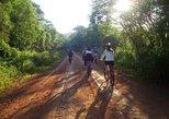 Iguazú Bike Tour to the Yaguareté Road from Puerto Iguazú