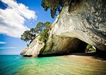 Coromandel Wanderer Small Group Tour from Auckland