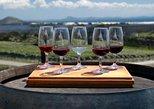 Vinícolas de Mendoza até Maipu: Excursão em grupo para degustação de vinhos com almoço. Mendoza, ARGENTINA