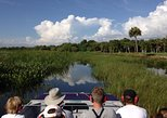 Small-Group Tour: Everglades Adventure Day Trip from Greater Fort Myers/Naples Area
