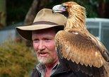 Kangaroo Island Wildlife Day Trip from Adelaide Including Seal Bay