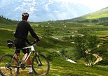 Bergen Active: The Exinge valley Bicycle downhill experience
