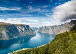Cruise Special - Flåm private tour