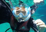 Mesoamerican Barrier Reef Skip-the-Line Small-Group Snorkel