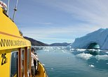 Fiord Adventure - Private charter 1-6 Pass - Cabin boat
