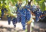 Willamette Valley Wine Tasting Tour from Eugene