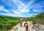 Vida Aventura Park in Guanacaste: Zipline Tour, Horseback Ride and Hot Springs