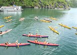 Halong Bay Full Day and 8 hours cruising