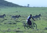1 day Ngorongoro Mountain Bike Safari