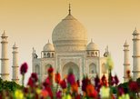 TravelToe Exclusive: Private Taj Mahal & Agra Fort Tour, Dine with a View