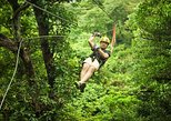 Antigua Seilrutschen-Abenteuer in den Baumkronen ab St. John's
