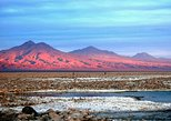 Atacama Salt Flat and Altiplanic Lagoons Day Tour