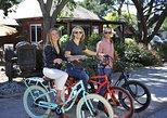 Electric Bike Rental and Wine Tasting Package
