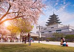 All in One Full day Tour 3(Gyeongbok Palace-N Seoul Tower-Gwang Jang Market)