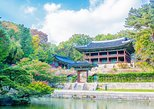 All in One Full Day Tour 1 (Two Palace & Namdaemun Market & Insadong)
