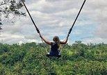 Private Bali Tour: Wonderful Ubud with Swing