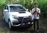 Private Custom Tour: 10-hour Best of Bali Tour